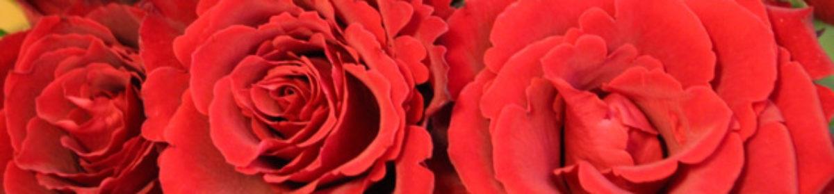 Blomsternavet
