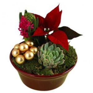 Julgrupp traditionell - välj själv färg på blommorna och stil på julgruppen. Ett alternativ hos Florister i Sverige