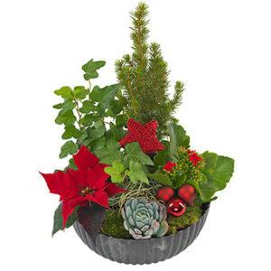 Traditionell julgrupp i rött och grönt. Du hittar den hos Euroflorist.