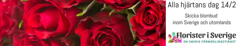 Skicka blomsterbud via Florister i Sverige!